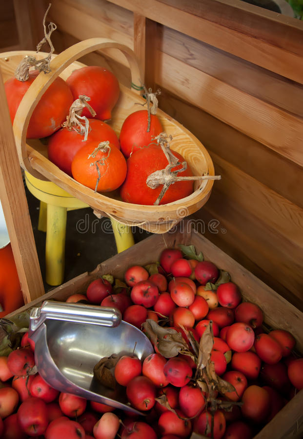 Harvest at home royalty free stock photos