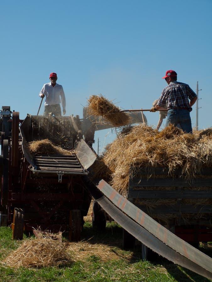 Harvest stock photos