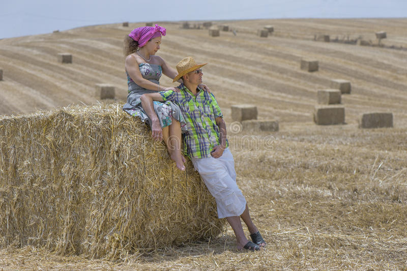 During the Harvest. A middle aged couple at the field during the harvesting
