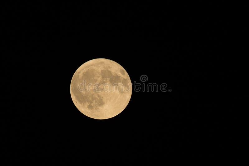 Harvest Moon stock photos