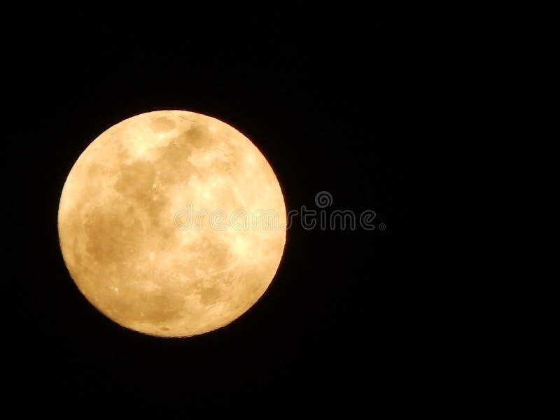 Harvest Moon Lunar Eclipse stock image