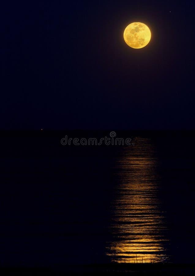 Harvest Moon-Stijgingen boven de Oceaan royalty-vrije stock foto's