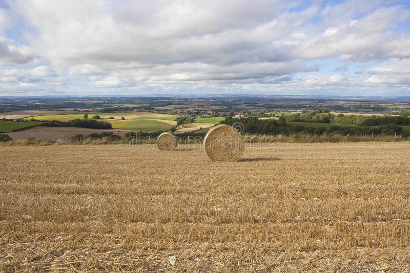 Download Harvest scenery stock image. Image of summer, english - 26599291