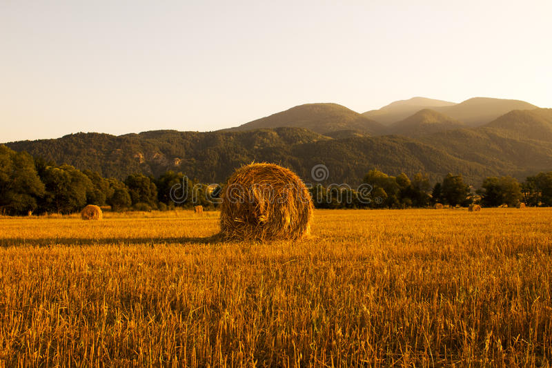 Harvest at sunset stock images