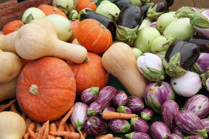 Harvest Table stock photography