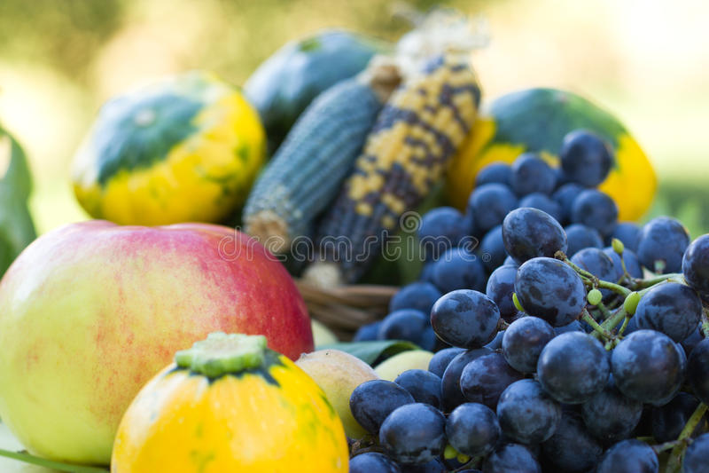 Download Harvest is on the table stock image. Image of juicy, foliage - 26433993
