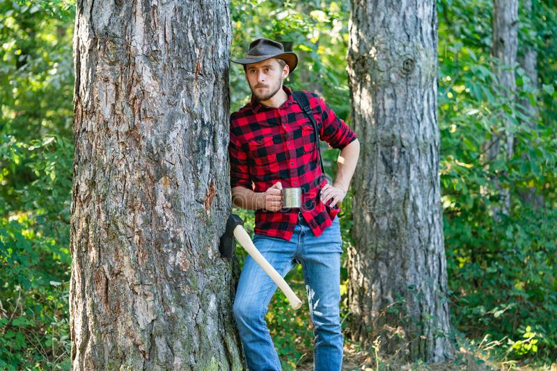 Harvest of timber. Bearded man with axe concept. Deforestation. Handsome Woodworkers lumberjack plaid shirt holding the. Axe on green nature background royalty free stock photo