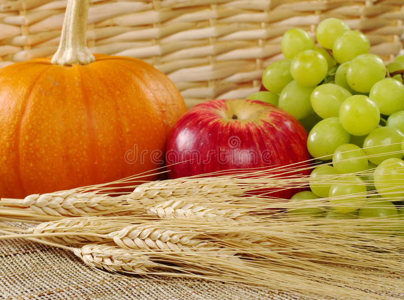 Harvest Time: Wheat with Apple, Grapes and Pumpkin. Wheat, grapes, apple and pumpkin with a basket as background (Selective Focus, Focus on the wheat stock image