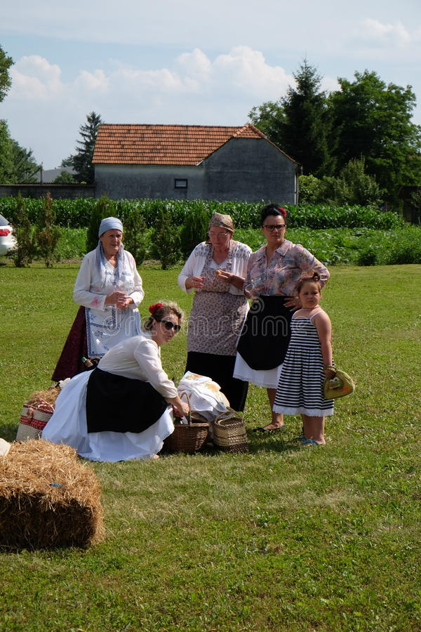 The harvest traditionally begins assembling villagers, singing and dancing and good food. In Nedelisce, Croatia royalty free stock image