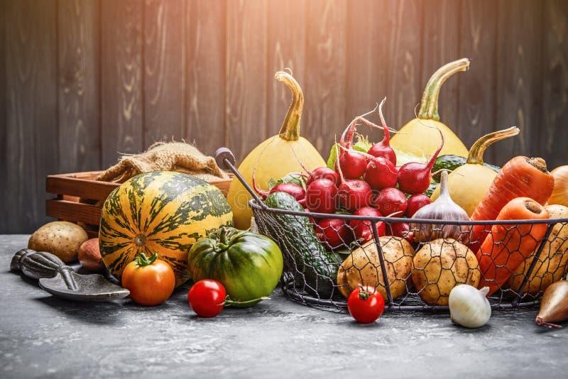 Harvest vegetables with herb kitchen garden stock image