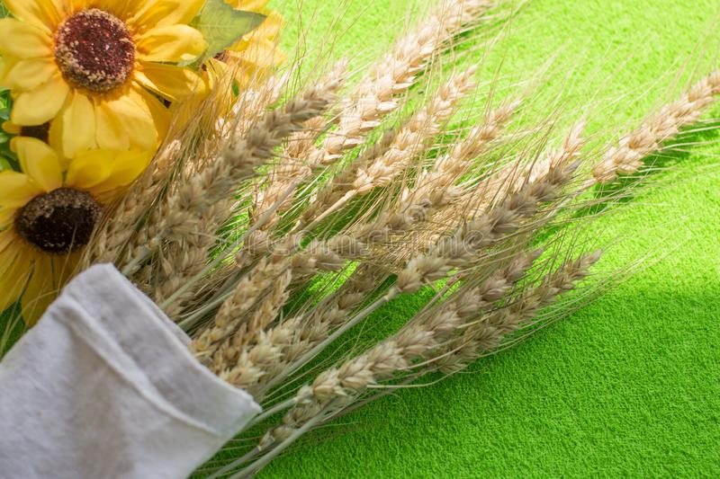 The harvest of wheat. royalty free stock photo