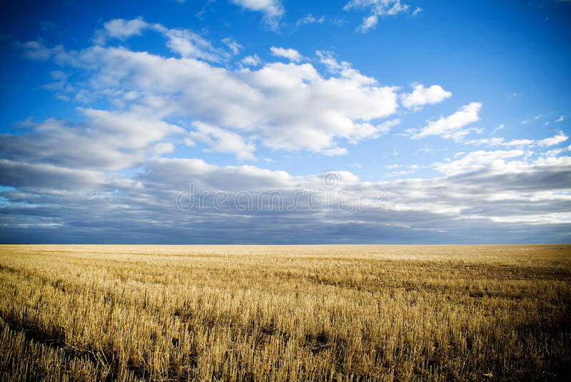 Harvested. Wheat fields in rural Australia after harvest stock photography
