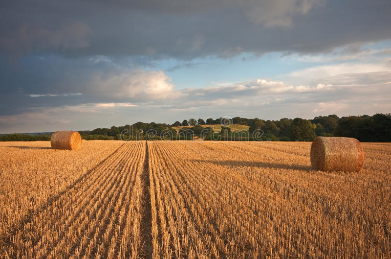 Download Harvested Bays Of Hay Under A Stormy Sunset Sky Stock Image - Image of england, harvesting: 15880507