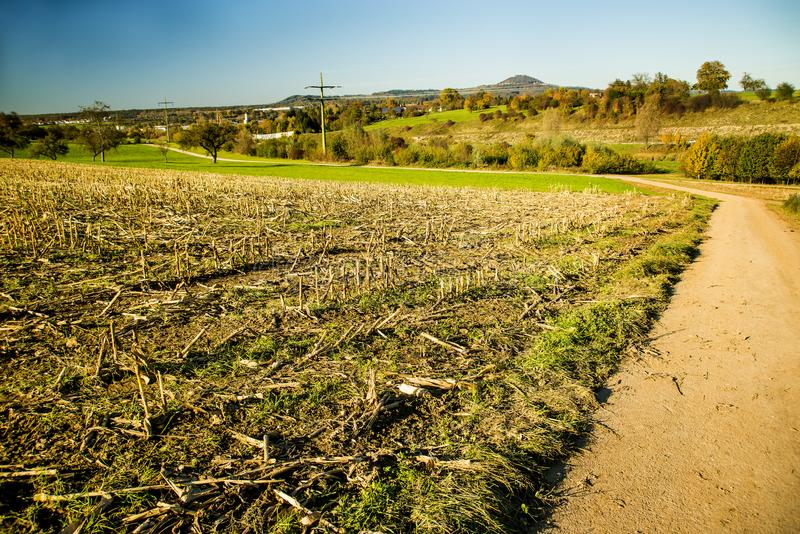 Harvested corn field with mountain in the background royalty free stock photography