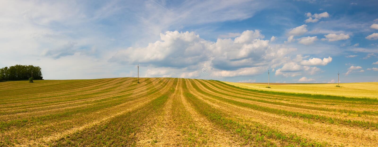 Harvested empty field on the hills. At sunset.Panorama picture royalty free stock photography