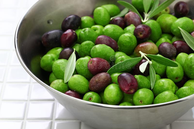 Harvested fresh olives royalty free stock images