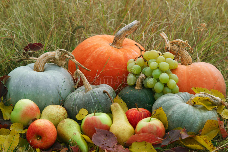 Download Harvested Fresh Vegetables And Fruits Stock Photo - Image: 21670026
