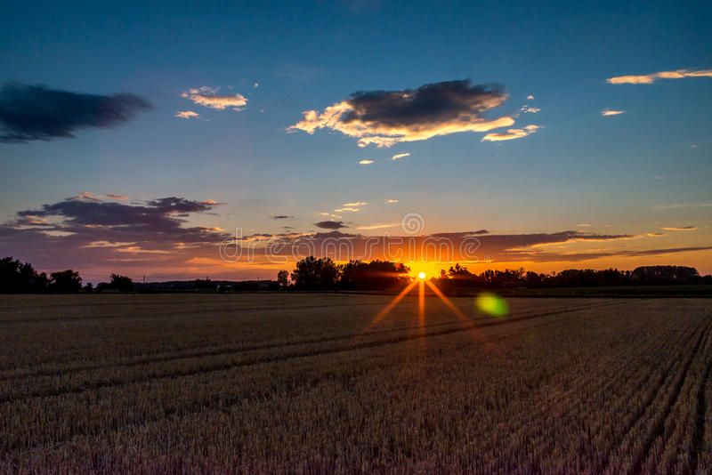 Harvested grain field on countryside at sunset royalty free stock images