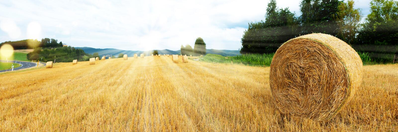 Harvested grain field and straw bales stock photography