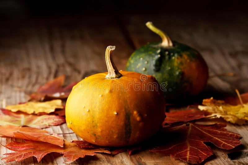 Download Harvested pumpkins stock image. Image of country, life - 15664873