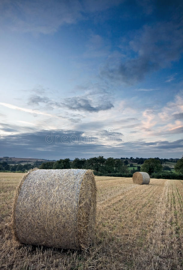 Download Harvested Straw Bales Under A Sunset Sky Stock Image - Image: 10823611