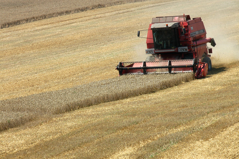 Harvester. Summer harvest on field in Czech republic royalty free stock images