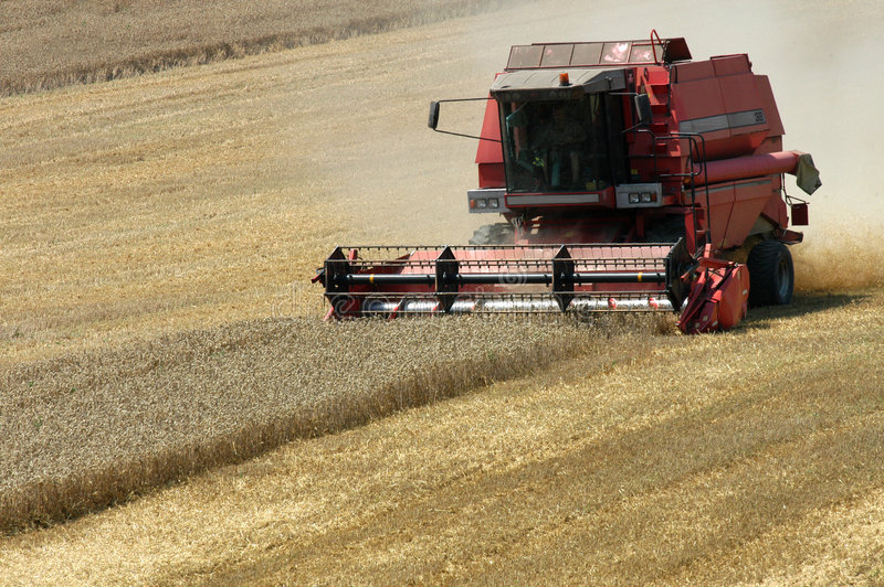 Harvester. Summer harvest on field in Czech republic stock image