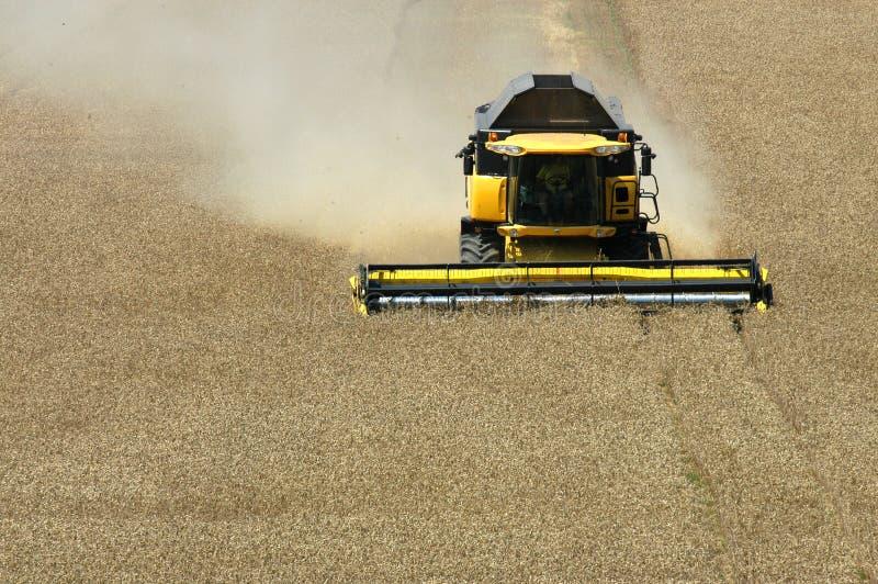 Harvester. Summer harvest on field in Czech republic stock images