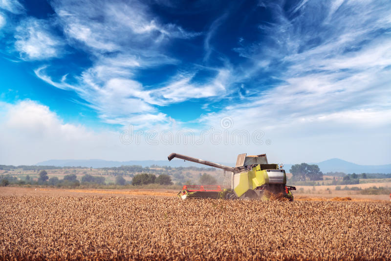 Harvester. Amazing rural scene on autumn field with harvester and birds royalty free stock images