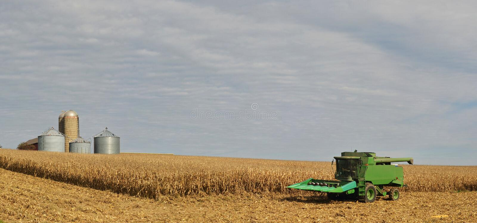 Harvester in corn field with grain bins royalty free stock photo