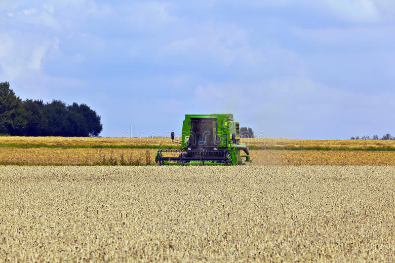 Download Harvester in corn fields stock image. Image of earth - 16523153