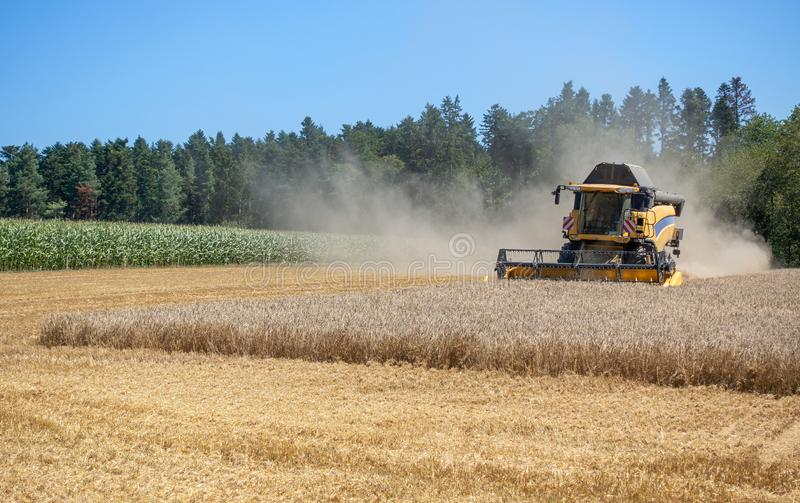Harvester at the harvest of a grain field royalty free stock photography