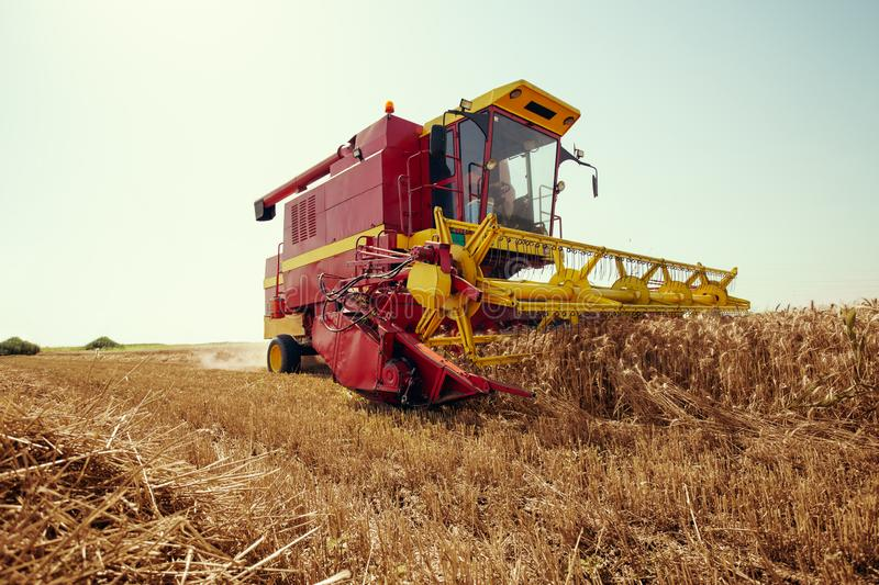 Harvester harvests wheat on field. On the blue sky royalty free stock image