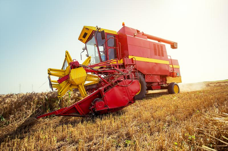 Harvester harvests wheat on field. On the blue sky royalty free stock images