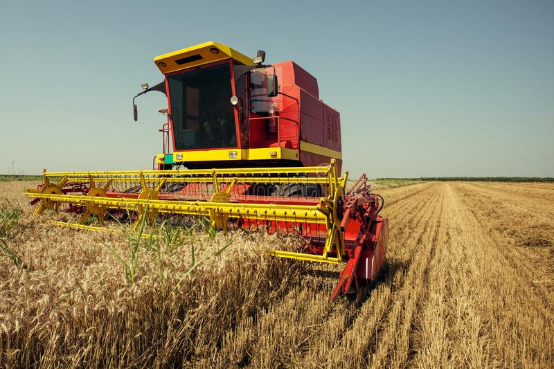 Harvester harvests wheat on field. On the blue sky royalty free stock photography