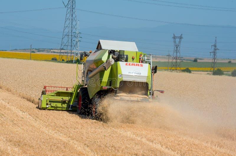 Harvester machine to harvest wheat field working. Reaping wheat field working. Veliko Tarnovo, Bulgaria - July 01.2017: Reaping wheat field working. Harvester stock photos