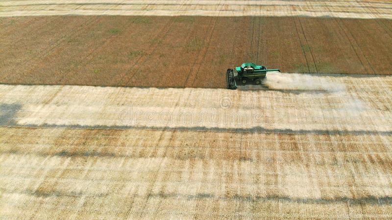 Harvester machine and wheat crop. Aerial. Harvester machine and wheat crop view above stock images