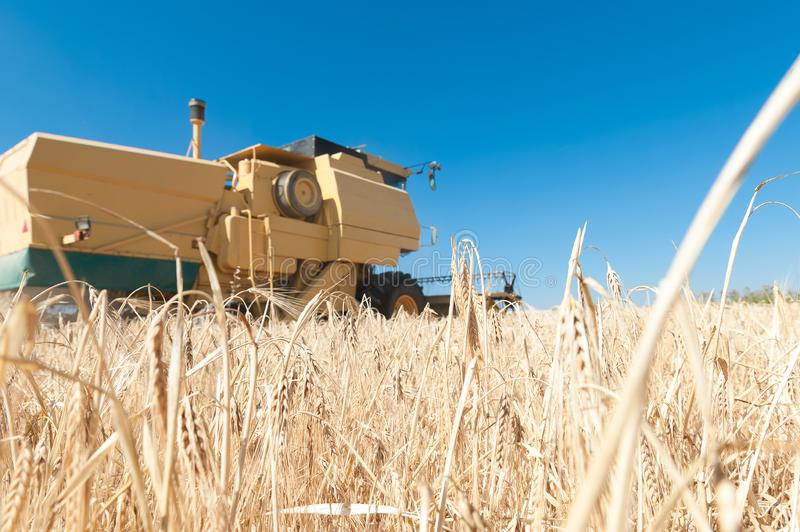 Harvester performing mowing tasks in the field. Harvester in the foreground on rustic background working in the field stock photography