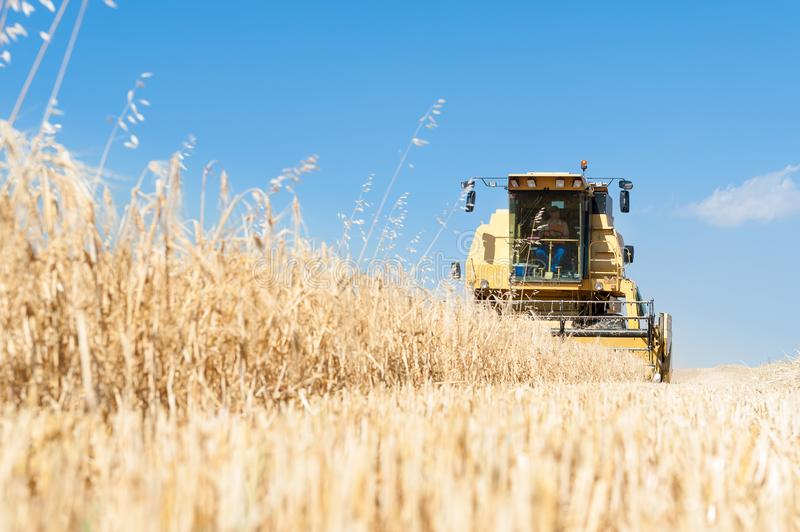 Harvester performing mowing tasks in the field. Harvester in the foreground on rustic background working in the field stock image
