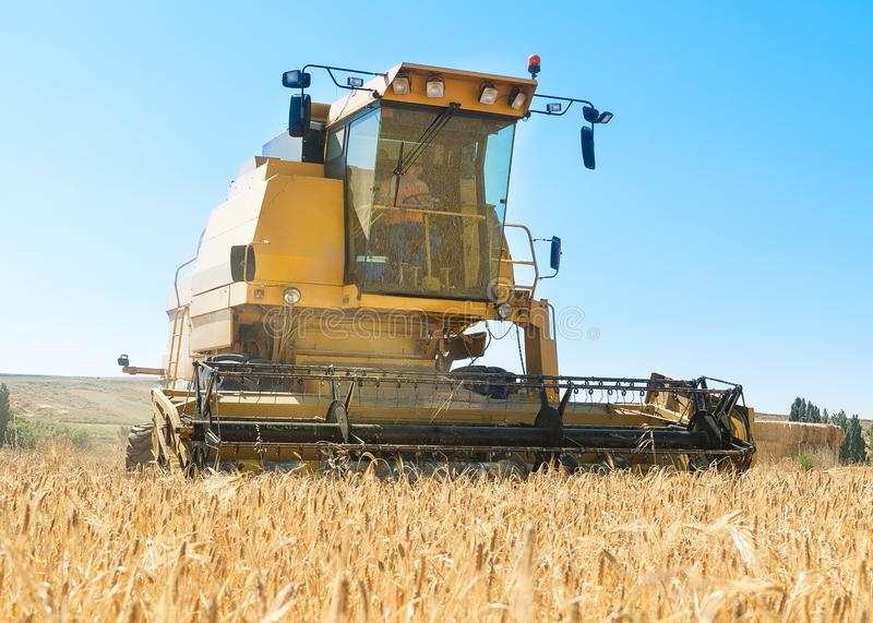 Harvester performing mowing tasks in the field. Harvester in the foreground on rustic background working in the field royalty free stock images