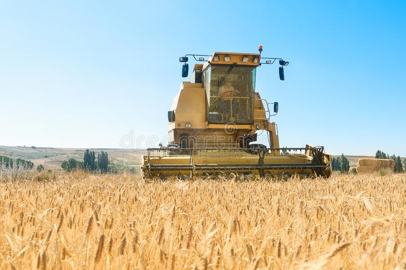 Harvester performing mowing tasks in the field. Harvester in the foreground on rustic background working in the field royalty free stock photos