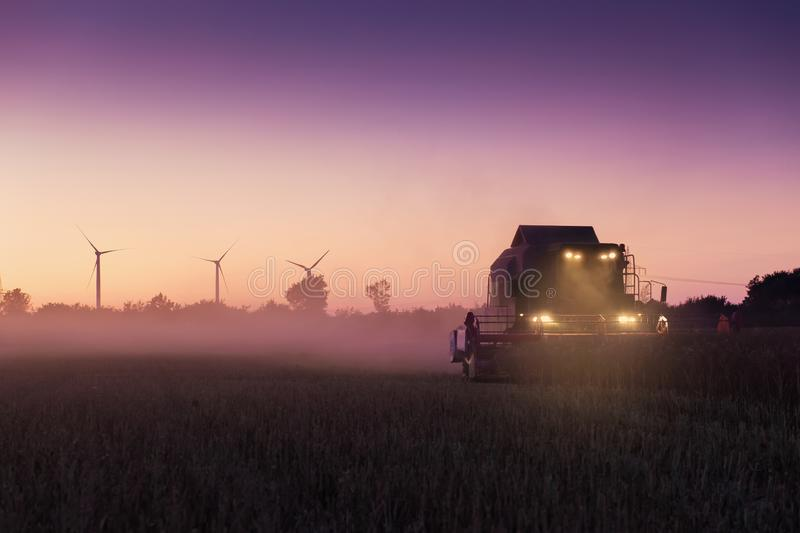 Harvester at rapeseed threshing in the evening stock photos
