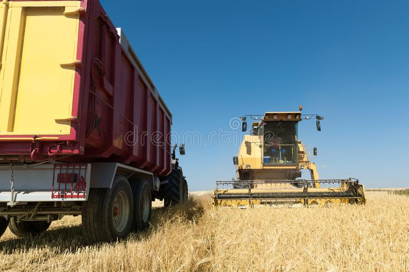 Harvester working in the field on sunny day with blue sky. Agricultural machinery working on the Barley tour with Sunny day royalty free stock image