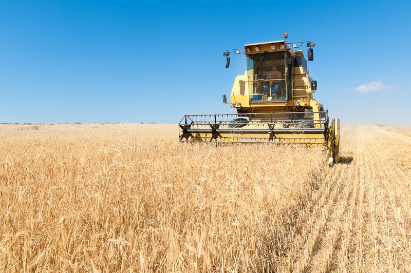 Harvester working in the field on sunny day with blue sky. Agricultural machinery working on the Barley tour with Sunny day stock images