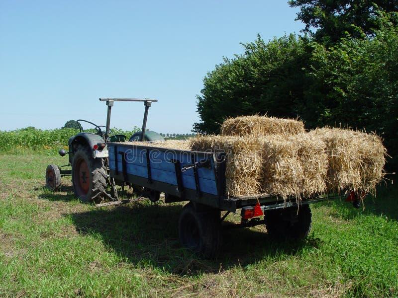 harvesting 1 stock image