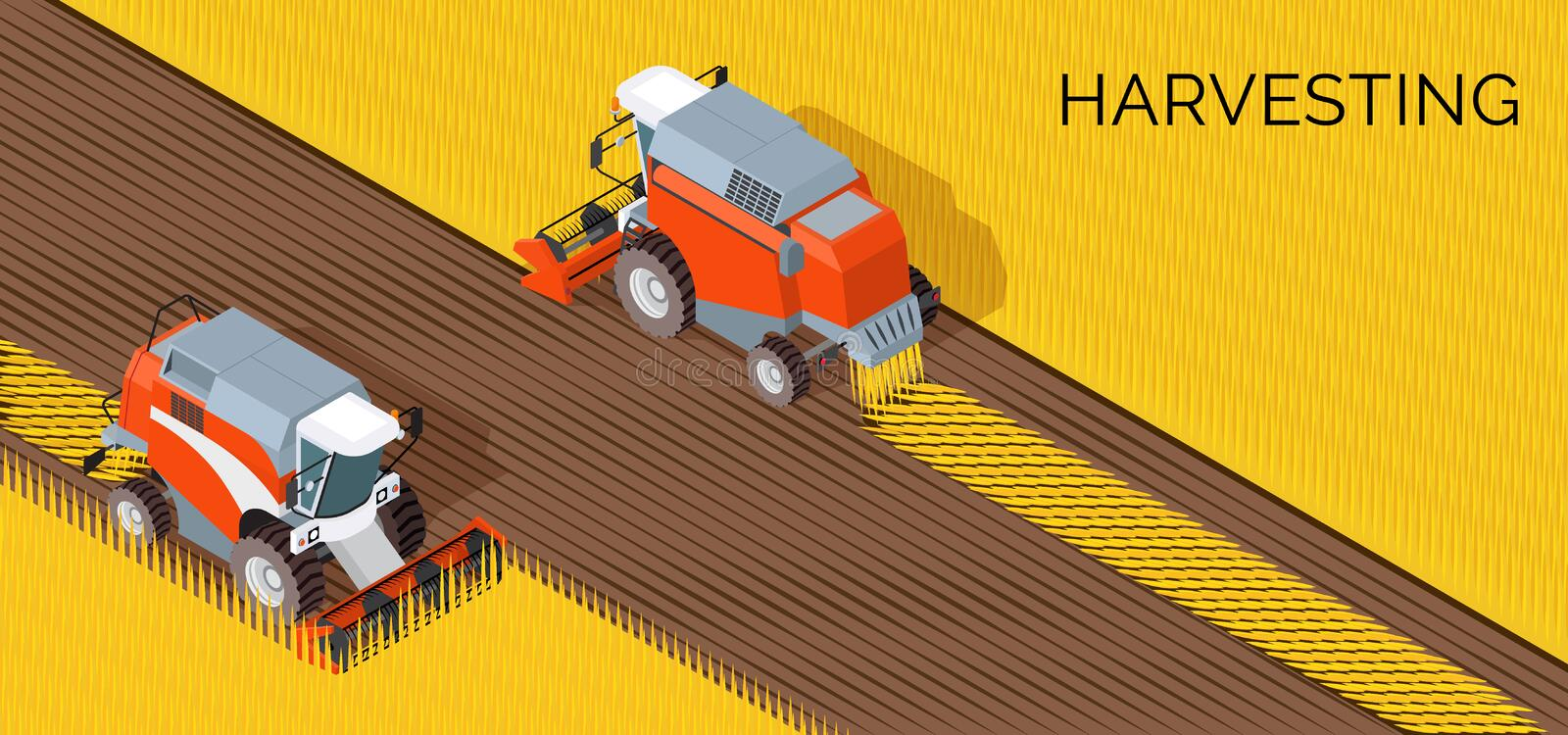 Harvesting concept, combine, agriculture machine on field with grain crop stock illustration