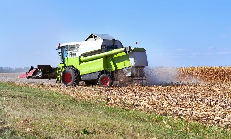 Harvesting corn with a combine in season and unloading grain into a truck, agricultural process stock photo
