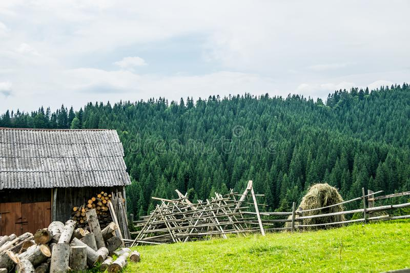 Harvesting firewood and hay in the village royalty free stock photos