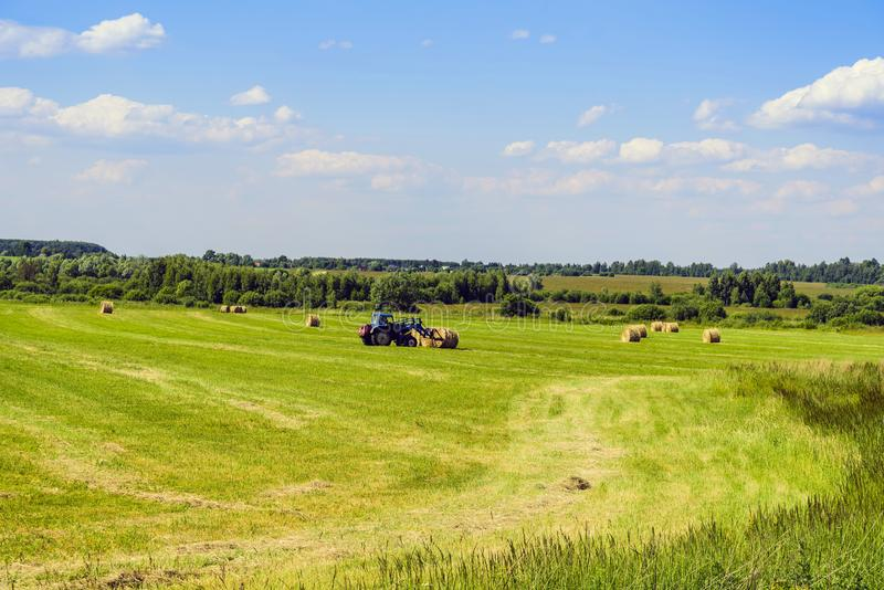 Harvesting hay in rolls on a mowing field with a tractor in the month of June. Moscow region. Russia. royalty free stock photo