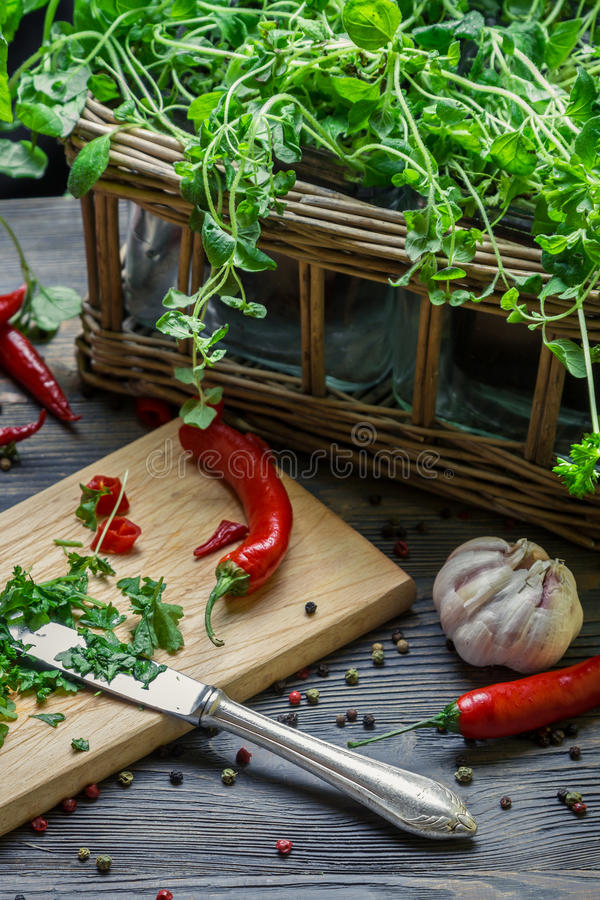 Harvesting homegrown spices for spring meal royalty free stock images